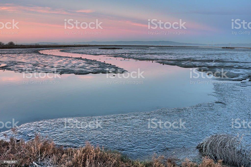 San Francisco Bay wetlands stock photo