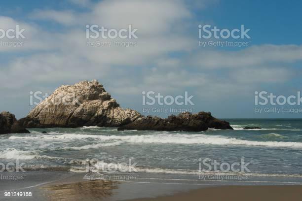 Photo of San Francisco California Ocean Beach Summer Landscape