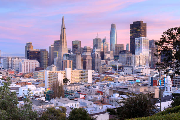 San Francisco Skyline in Pink and Blue Skies Ina Coolbrith Park, San Francisco, California, USA. san francisco california stock pictures, royalty-free photos & images