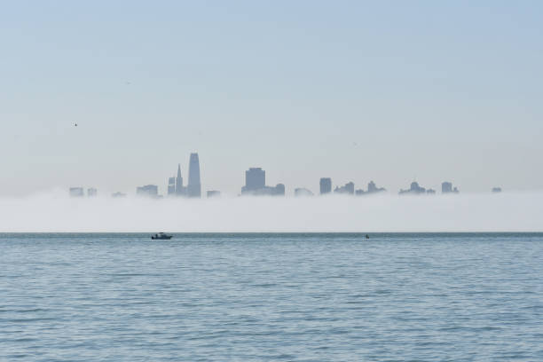 san francisco skyline with low level fog - steven harrie stock photos and pictures