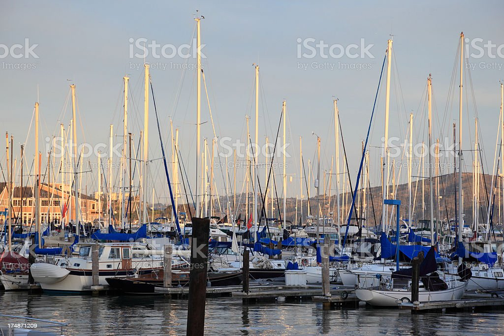 San Francisco's marina royalty-free stock photo