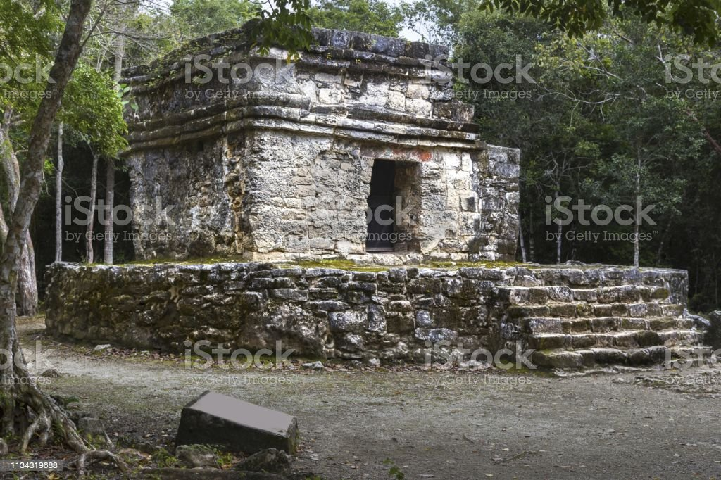 San Gervasio Archeological Site Mayan Ruins Cozumel Mexico Stock Photo Download Image Now Istock