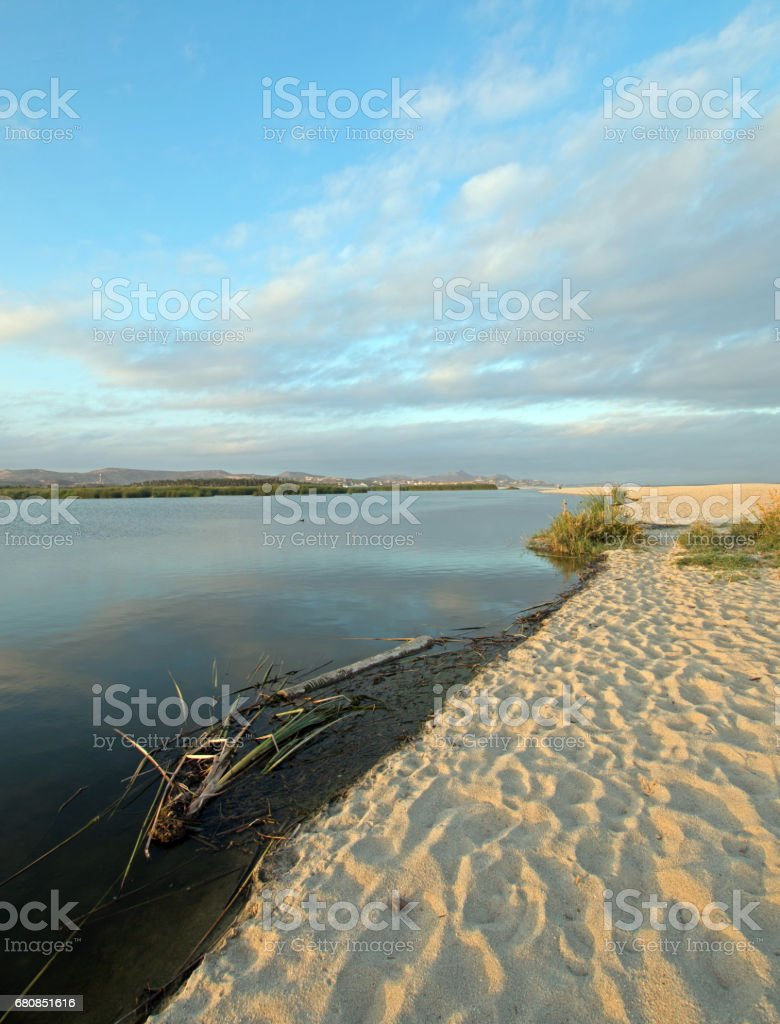 San Jose Del Cabo Lagoon / Estuary nature reserve just north of Cabo San Lucas Baja Mexico BCS royalty-free stock photo