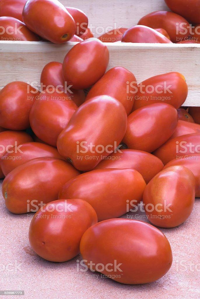 San Marzano tomatoes stock photo