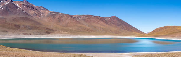 San Pedro de Atacama, Antofagasta Region, Chile (Lagunas Miscanti and Miñiques) stock photo