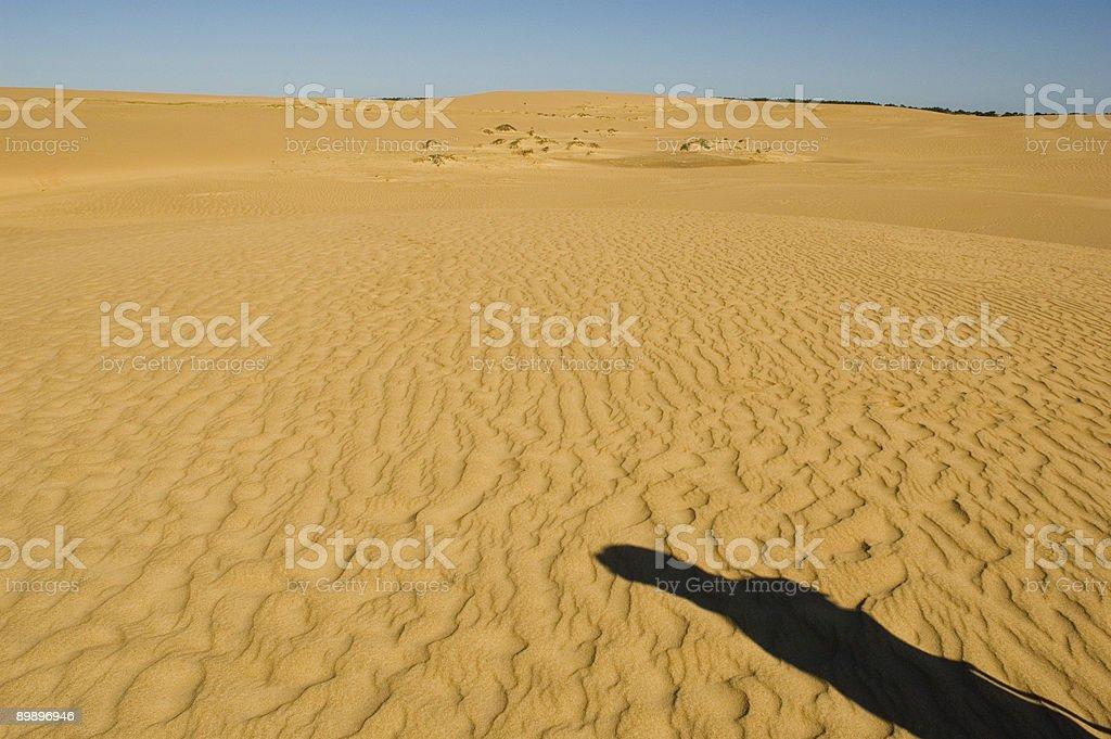 Sand and shade royalty-free stock photo