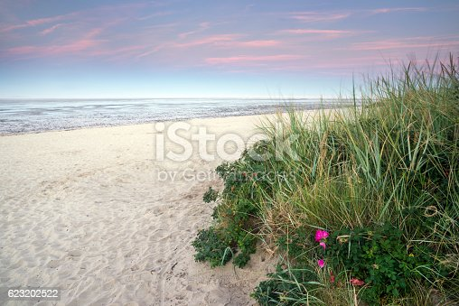 Sand beach and wadden sea at dusk. Taken at sunset in Schillig, Wangerland, Friesland, Lower Saxony, Germany, Europe.