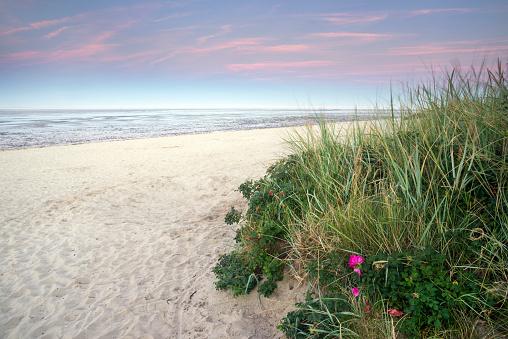 Sand beach and wadden sea at dusk