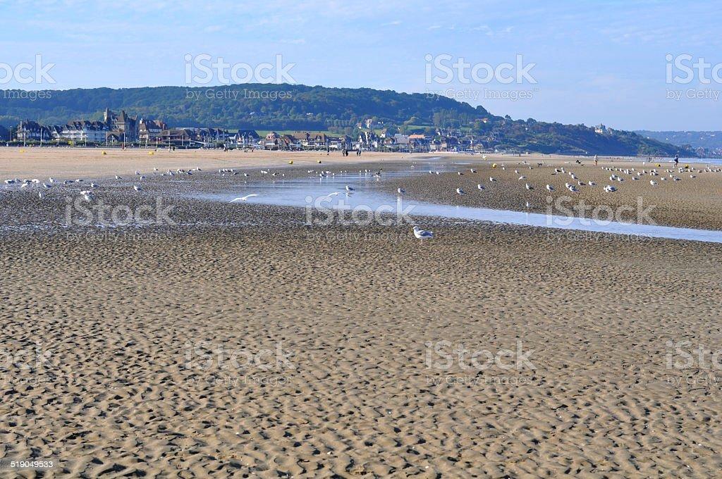 Sand beach in Deauville stock photo