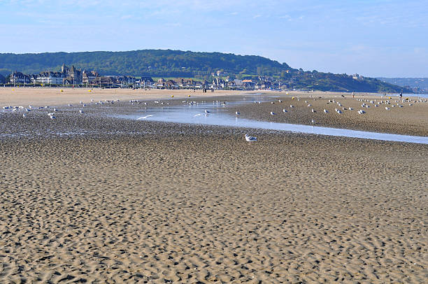 Sand beach in Deauville