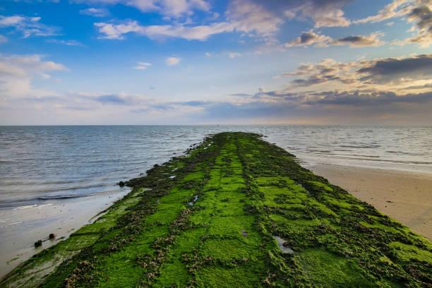 sandstrand paradies blick auf insel norderney - urlaub norderney stock-fotos und bilder