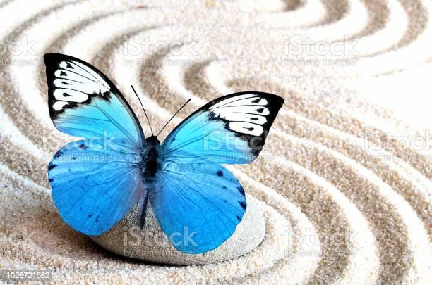 Sand blue butterfly and spa stone in zen garden picture id1026721582?b=1&k=6&m=1026721582&s=612x612&h=wrpulpv5uwfcog8r0p3h56eohtx n yyyudrvamclhk=
