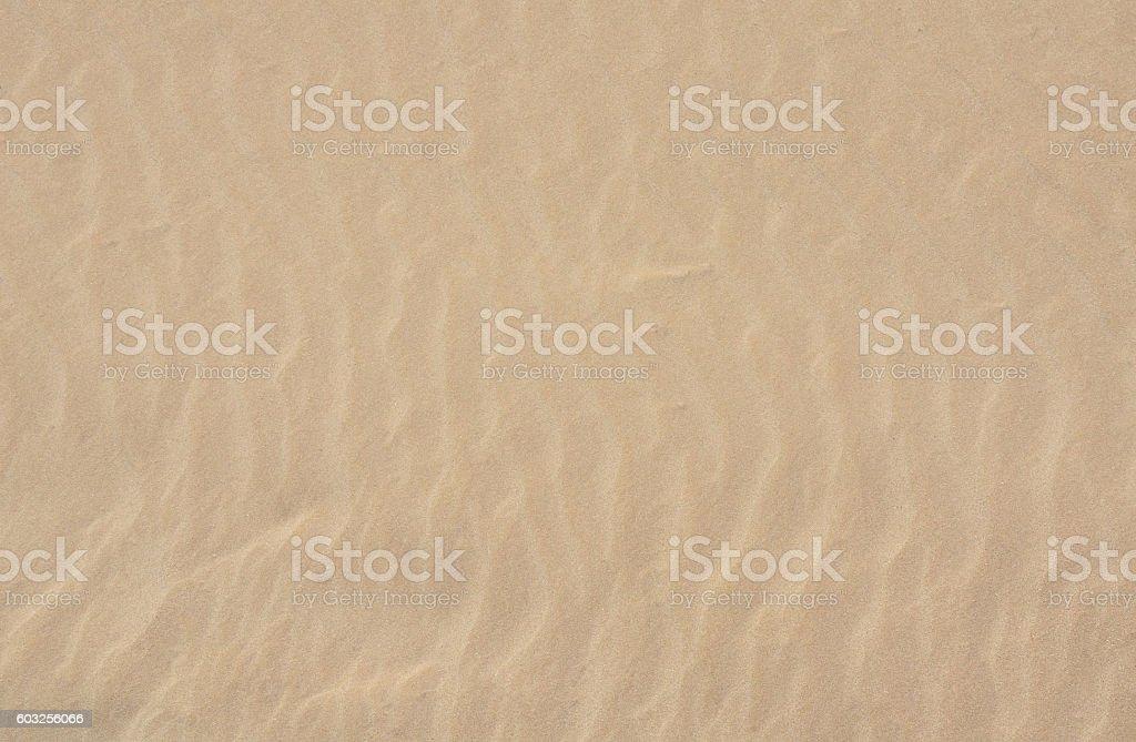 Sand Close Up stock photo