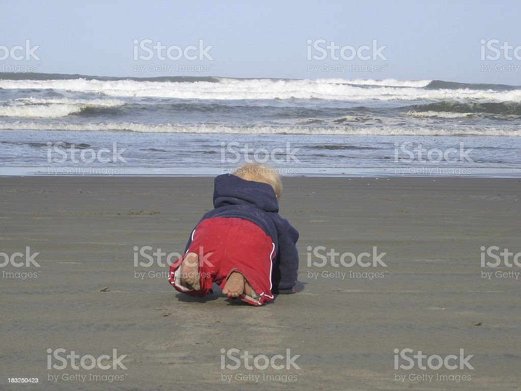 Sand Crawling royalty-free stock photo