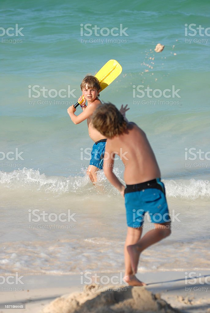 Sand cricket in the surf stock photo