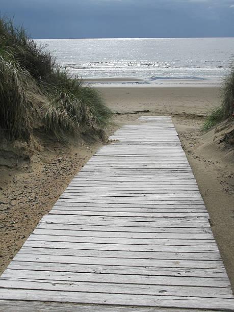 sand dune boardwalk - sand dune sweden bildbanksfoton och bilder