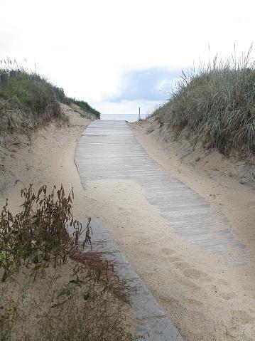 Sand Dune Boardwalk-foton och fler bilder på 2015