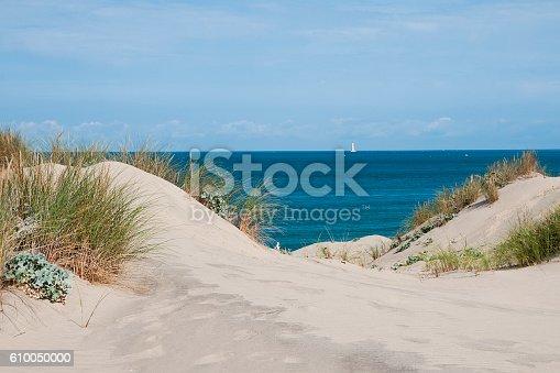 istock Sand dune in France 610050000