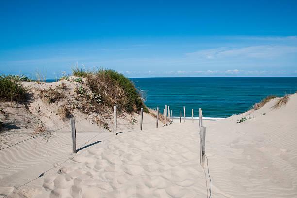 sand dune in france - fkk strand stock-fotos und bilder
