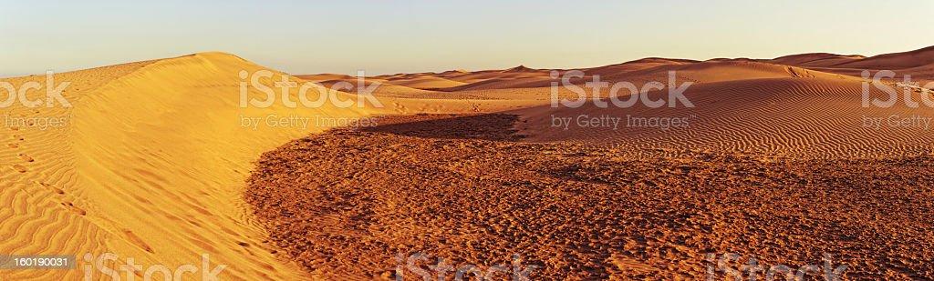 Sand Dune of Maspalomas (Gran Canaria) stock photo