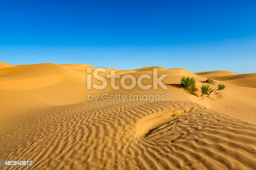 The Grand Erg Oriental / Great Eastern Sand Sea is a large erg or