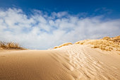 istock Sand dune on the coast of Sylt 171153014