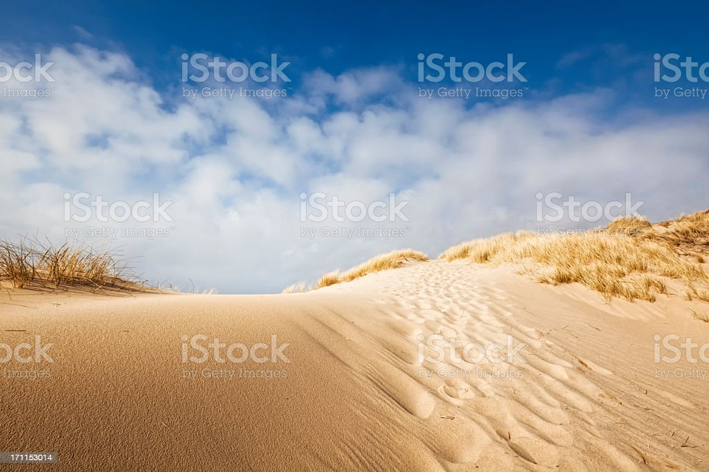 Sand dune on the coast of Sylt stock photo