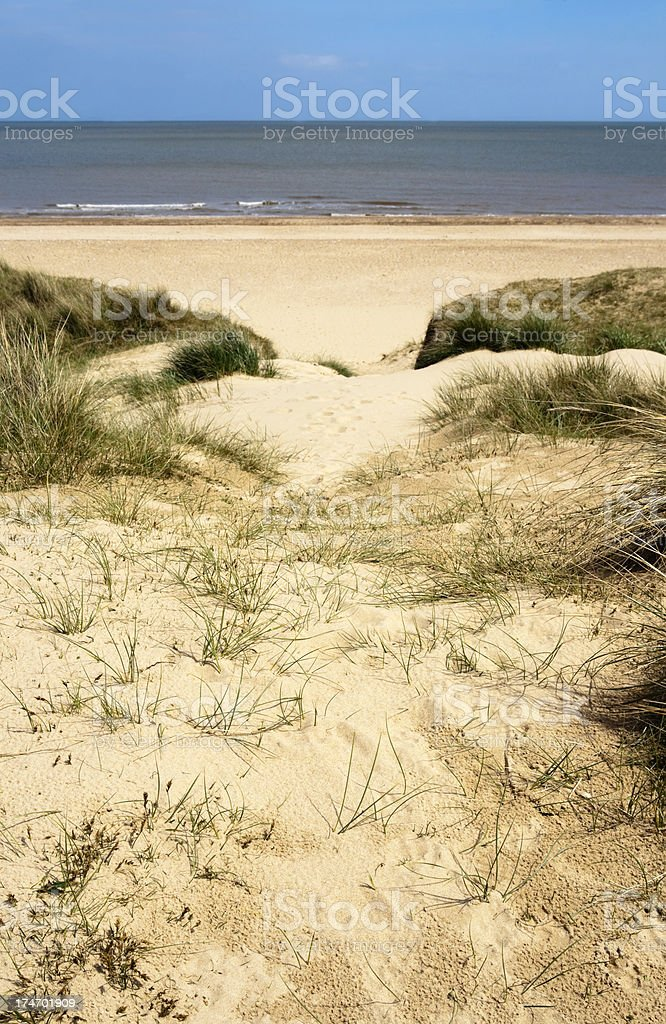 Sand dune path royalty-free stock photo