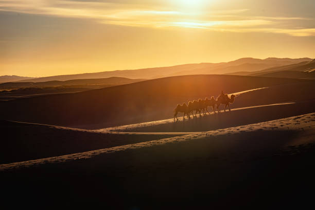 Sand Dune Sand dunes glow when the sun was breaking the darkness silk road stock pictures, royalty-free photos & images