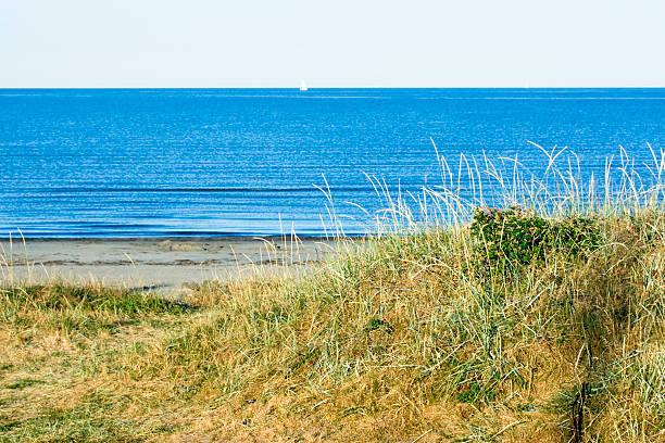 sand dune - sand dune sweden bildbanksfoton och bilder