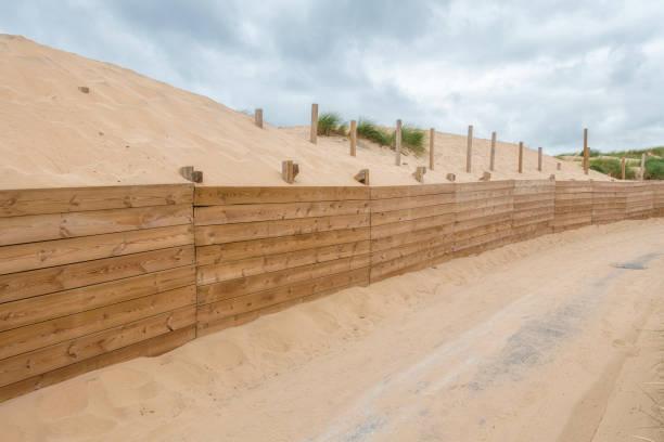sanddyn stabilisering vägg. - sand dune sweden bildbanksfoton och bilder