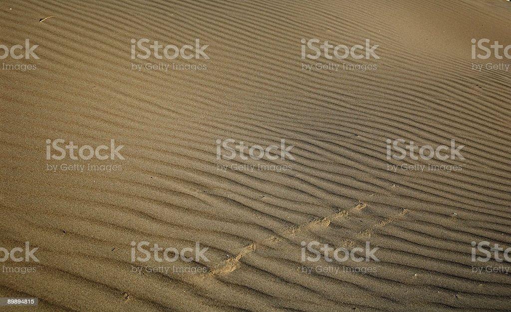 Sand dune texture royalty-free stock photo