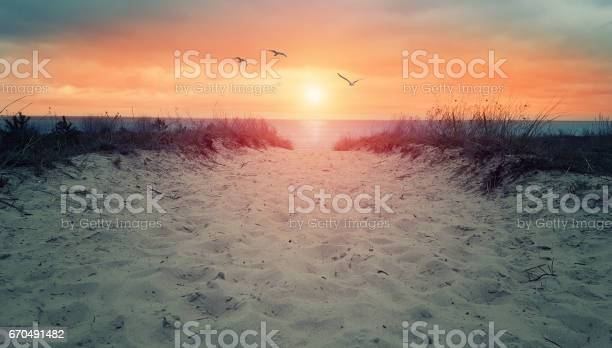 Photo of sand dune to ocean - way to beach - in sunset or sunrise
