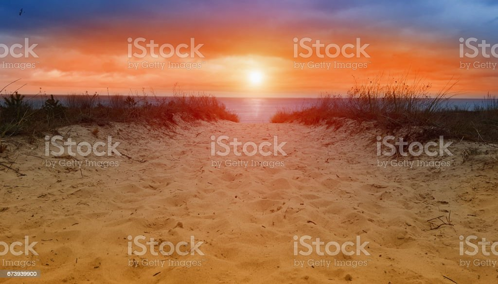 sand dune to ocean - way to beach - in sunset or sunrise stock photo