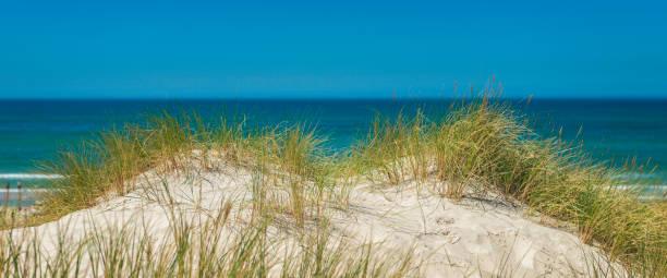 sanddyn med havsutsikt - sand dune sweden bildbanksfoton och bilder