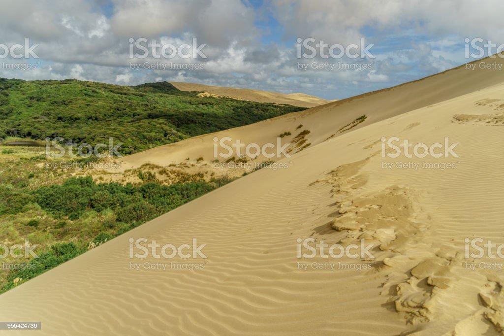 sand dune with footprints under cloudy sky, Giant Sand Dunes, New Zealand - Zbiór zdjęć royalty-free (Bez ludzi)