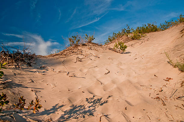 sand dune with wispy clouds in background - provincial park stock photos and pictures