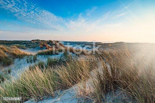 sand dunes along the Dutch coast near The Hague; Kijkduin, Netherlands