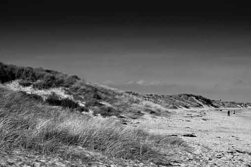 Sand dunes and beach at Seaton Sluice