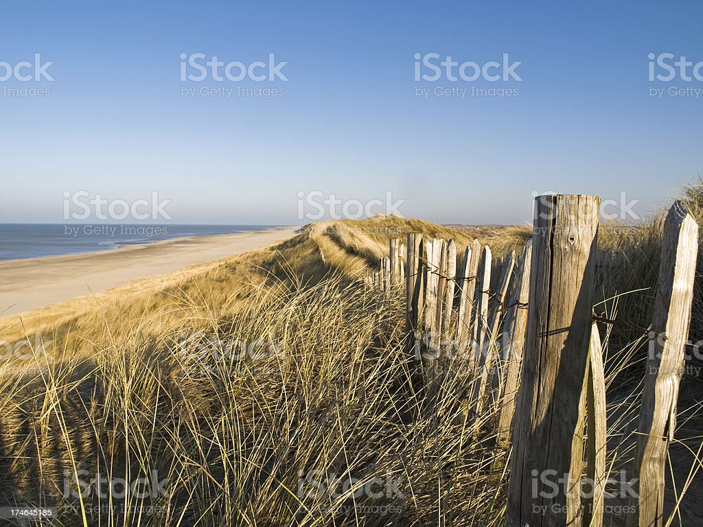 sand dunes and beach royalty-free stock photo