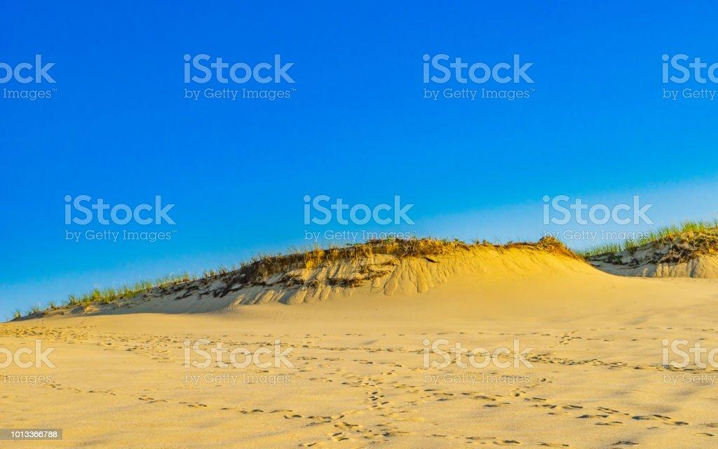 hermosa casa de bacalao de cabo Dunas De Arena Y Hierba Del Cabo Provincelands Bacalao Ma