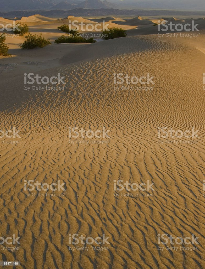 Sand Dunes and Mountains royalty-free stock photo
