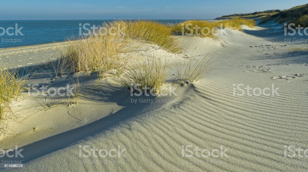 Sand Dunes At The Coast Of Island Sylt Germany Stock Photo