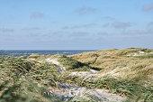 Sand dunes at the danish beach
