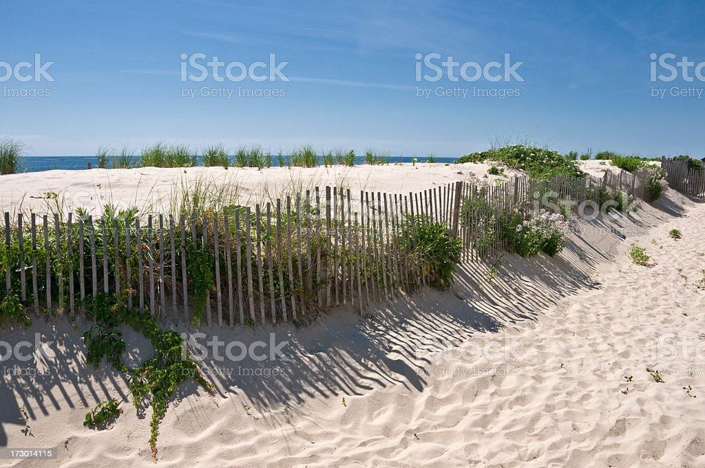 Sand dunes at the Jersey Shore under clear blue skies stock photo