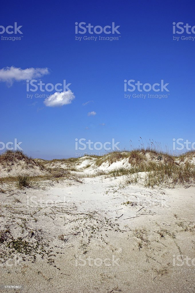 Sand Dunes Cumberland Island Georgia royalty-free stock photo