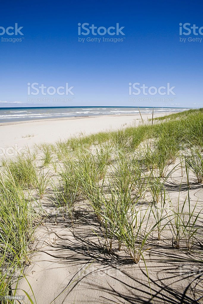 Sand Dunes, Grass and Lake royalty-free stock photo