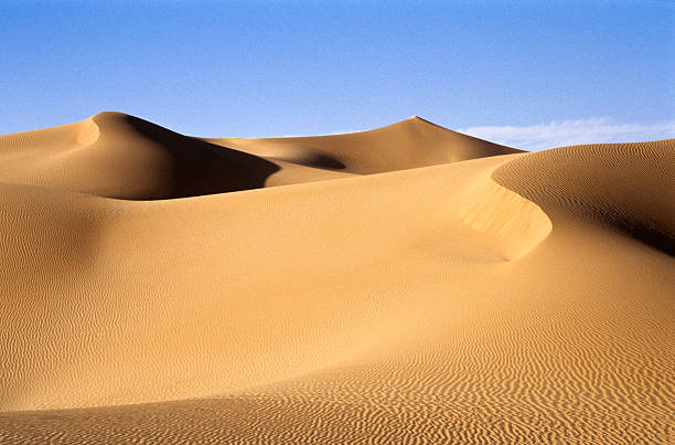 sand dunes in libyan desert - sand dune stock photos and pictures
