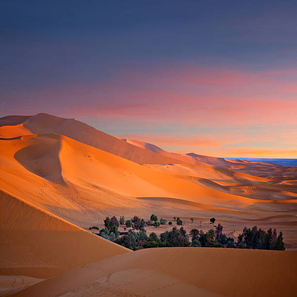 Sand dunes in Sahara desert  in Morocco, North Africa stock photo