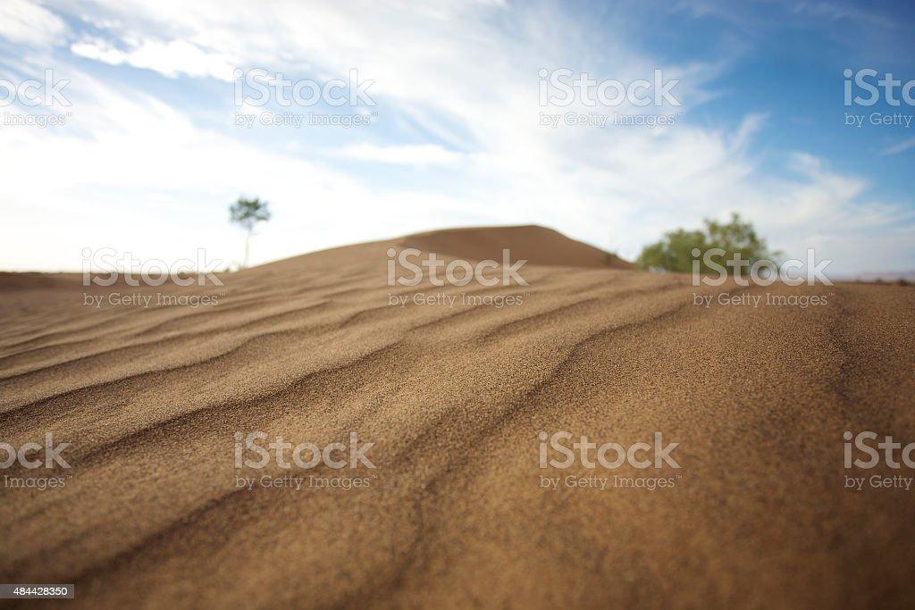 Sand dunes in Sahara desert stock photo